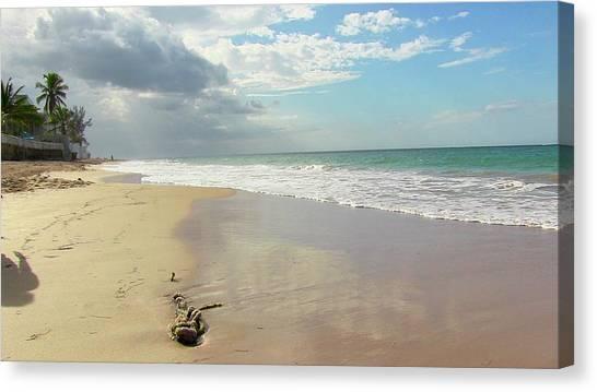 Playa El Ultimo Trolly Canvas Print