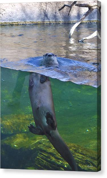 Playful Otter Canvas Print