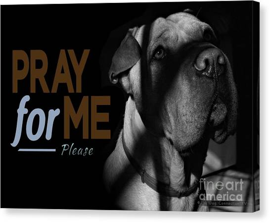 Canvas Print featuring the digital art Please Pray For Me by Kathy Tarochione