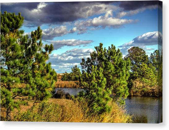 Pleasure House Point Natural Area  Canvas Print