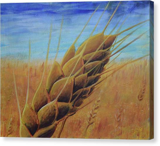 Plentiful Harvest Canvas Print