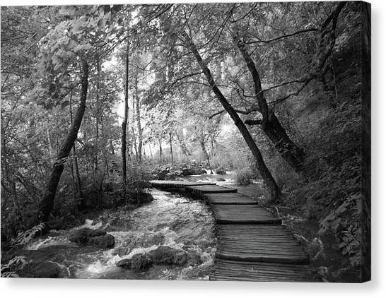 Plitvice In Black And White Canvas Print