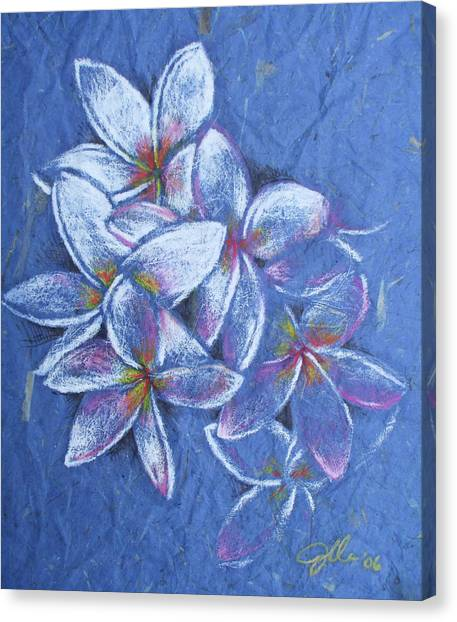 Plumeria Canvas Print by Jennifer Bonset