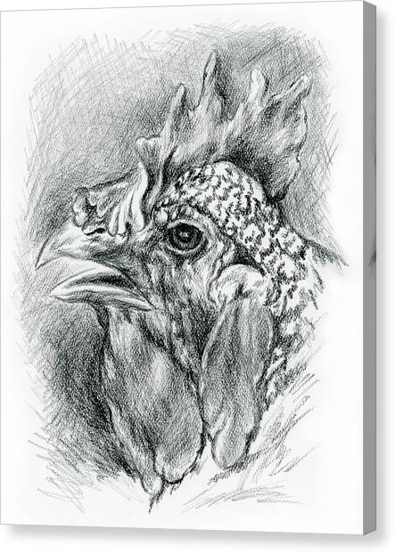 Canvas Print featuring the drawing Plymouth Barred Rock Hen In Charcoal by MM Anderson