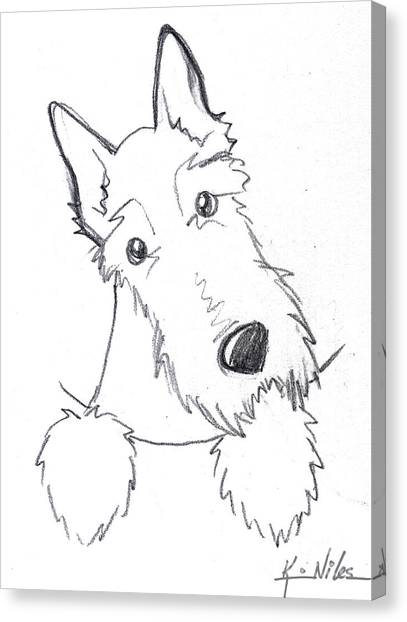 Scotty Canvas Print - Pocket Scottie Sketch by Kim Niles