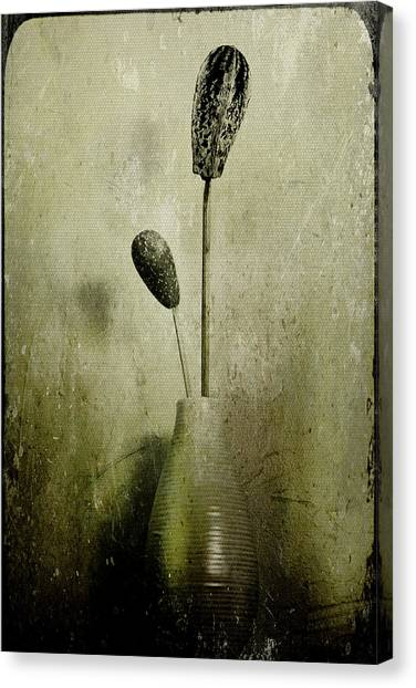 Pods In A Vase Canvas Print