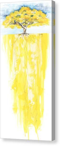 Poinciana Tree Yellow Canvas Print