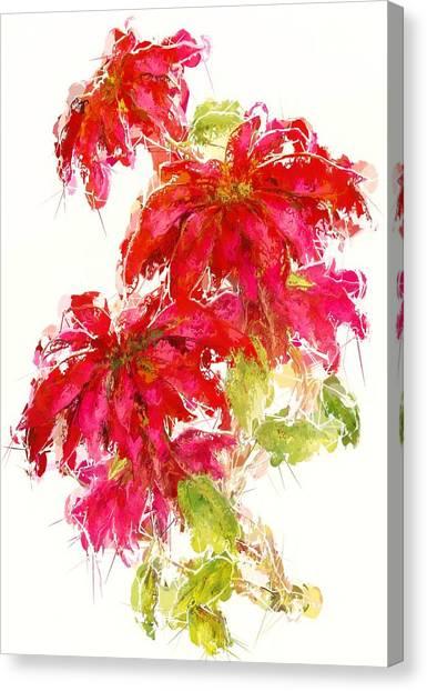 Canvas Print - Poinsettia by Amanda Lakey