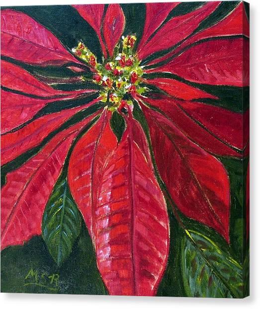 Poinsettia Closeup Canvas Print by Maria Soto Robbins