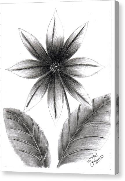Poinsettia Canvas Print by Lynnette Jones