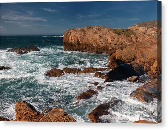 Point Lobos 1 Canvas Print
