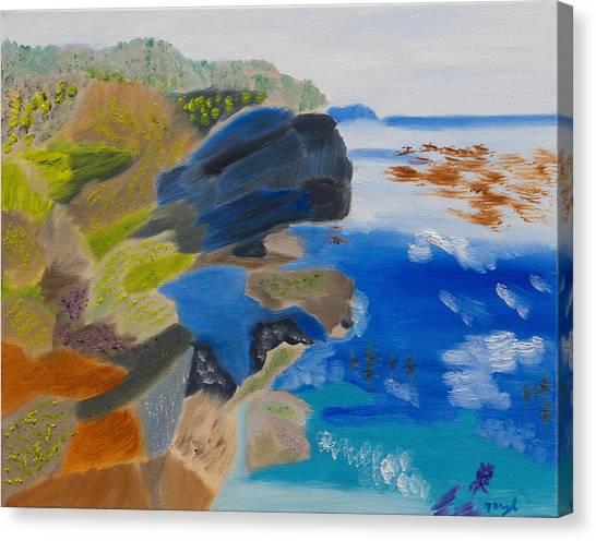 Cliffs Of Point Lobos Ca Canvas Print