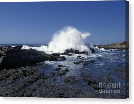 Point Lobos Seascape 2 Canvas Print