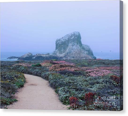 Point Piedras Blancas Canvas Print