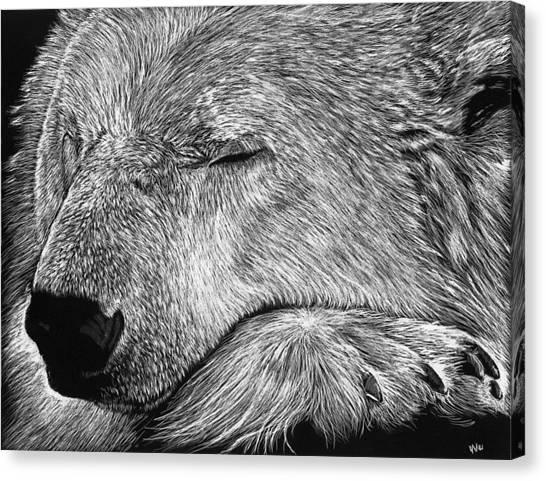 Polar Bear Asleep Canvas Print