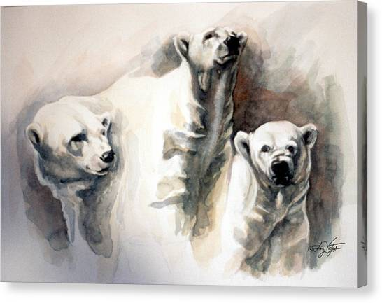 Polar Bear Study Canvas Print