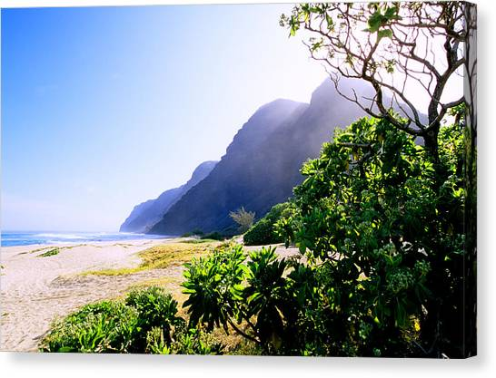 Polihale Morning Canvas Print by Kevin Smith