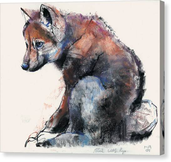 Wolves Canvas Print - Polish Wolf Pup by Mark Adlington