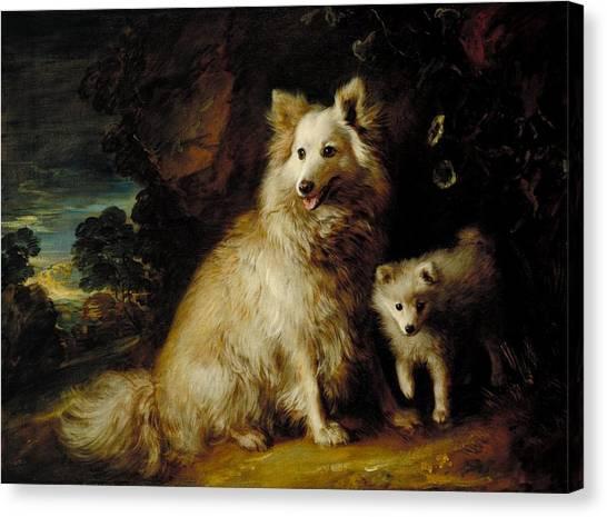 Pomeranians Canvas Print - Pomeranian Bitch And Puppy by Thomas Gainsborough