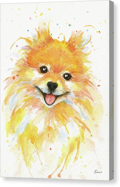 Pomeranians Canvas Print - Happy Pomeranian by Kathleen Wong