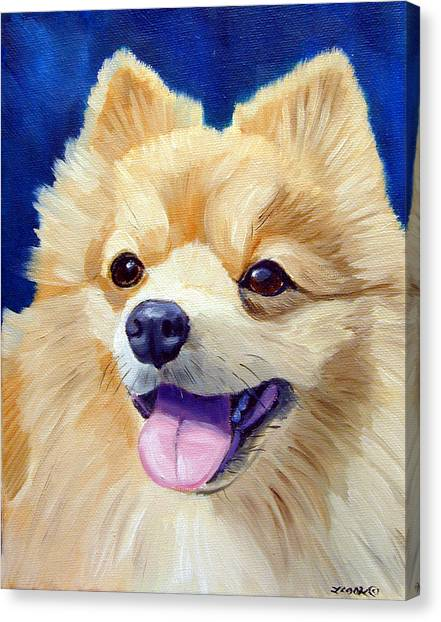 Pomeranian Canvas Print - Pomeranian by Lyn Cook