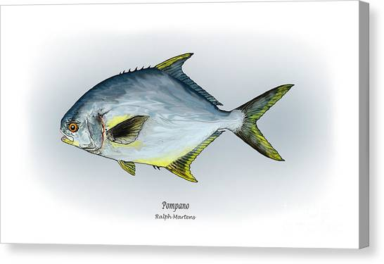 Angling Art Canvas Print - Pompano by Ralph Martens