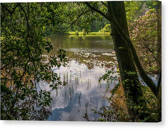 Pond In Spring Canvas Print