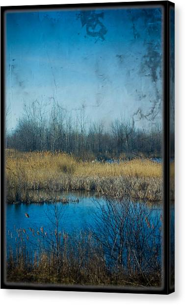 Pond In The Field Canvas Print by Michel Filion