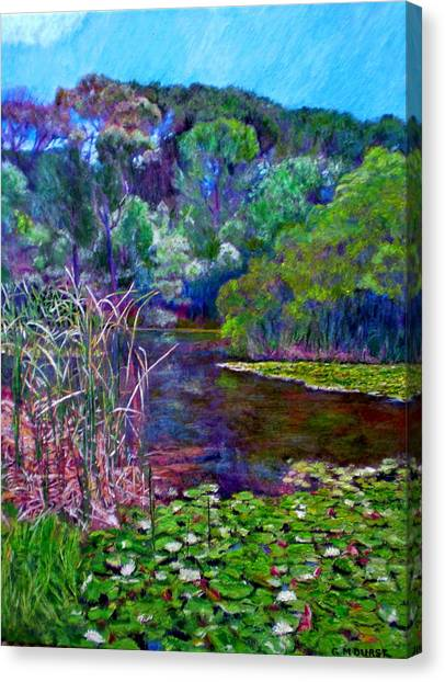 Cape Lily Canvas Print - Pond Of Tranquility by Michael Durst