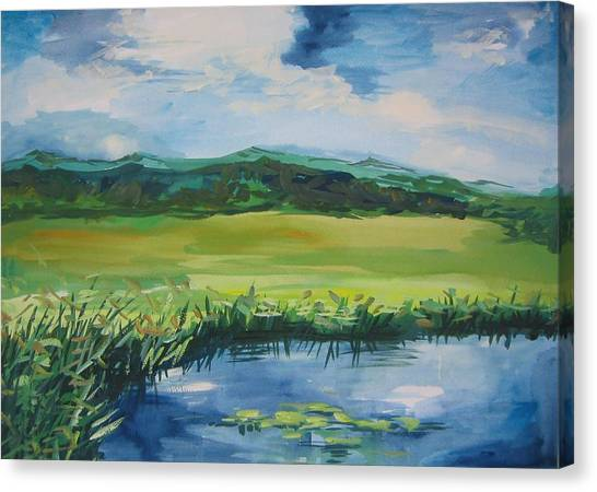 Pond Valley Canvas Print by Min Wang