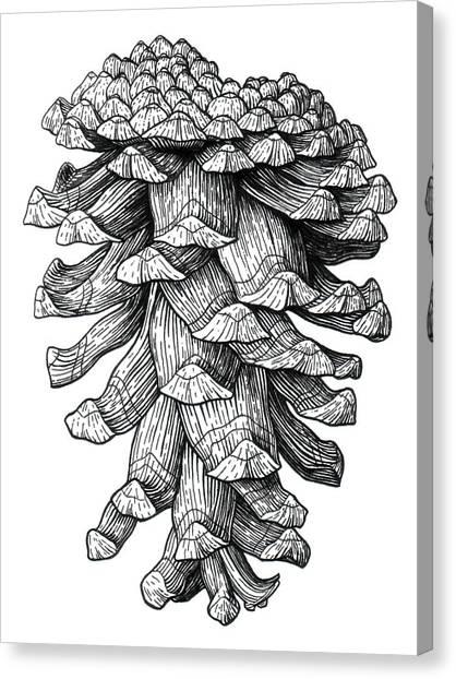 Ponderosa Pinecone Canvas Print by Kirsten Wahlquist