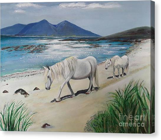 Ponies Of Muck- Painting Canvas Print