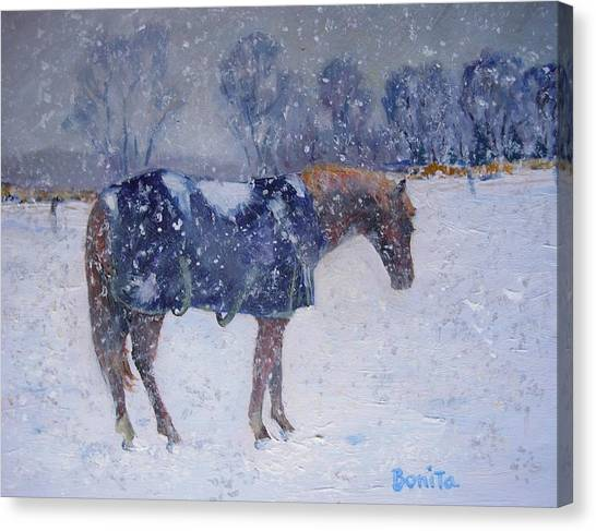 Pony In The Snow Canvas Print