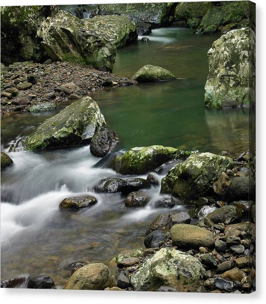 Pools And Eddies Canvas Print