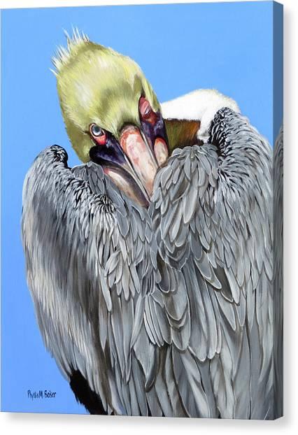 Popeye The Pelican Canvas Print