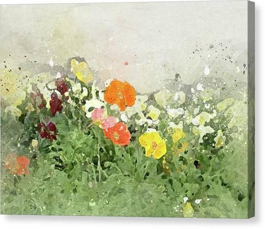 Poppies-2-c Canvas Print