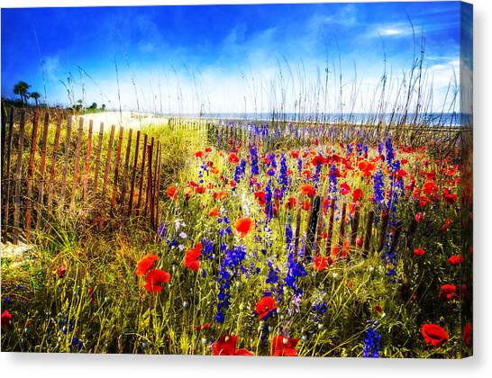 Poppys Canvas Print - Poppies By The Sea by Debra and Dave Vanderlaan