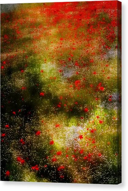 Poppies For Remembrance Canvas Print