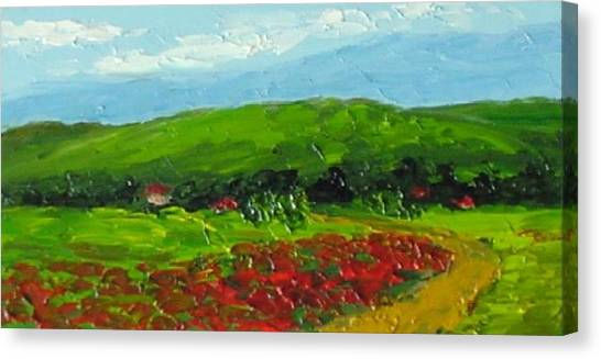 Poppies Canvas Print by Fred Wilson