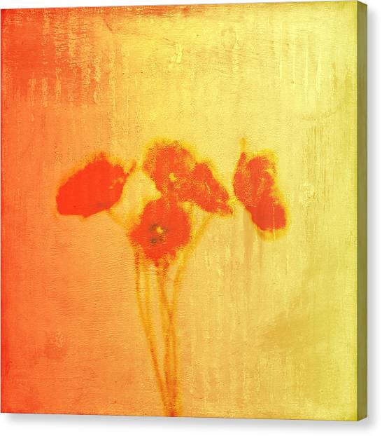 Poppies Canvas Print by Jude Reid