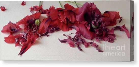 Poppies Petals Canvas Print