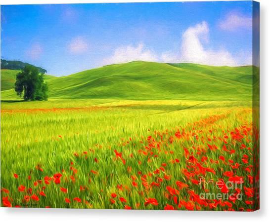 Painterly Canvas Print - Poppy Field by Veikko Suikkanen