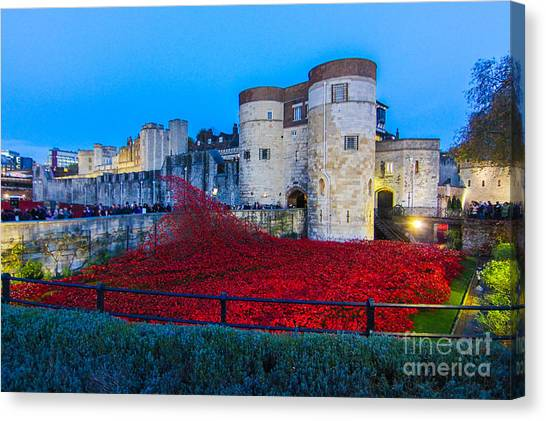 Poppy Flowers Tower Of London Canvas Print