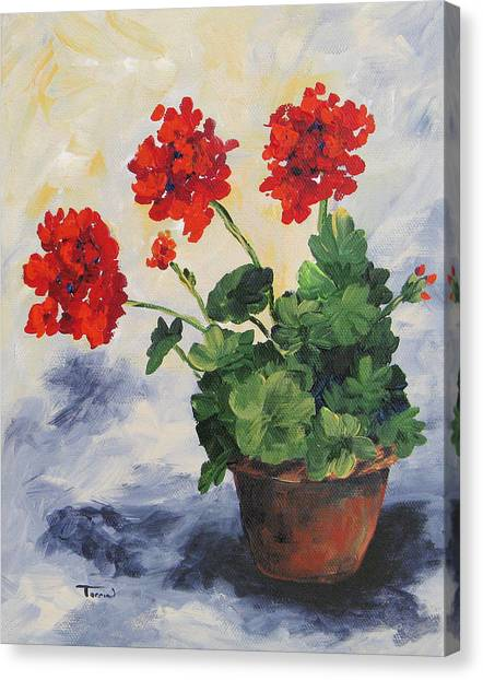 Porch Geraniums Canvas Print