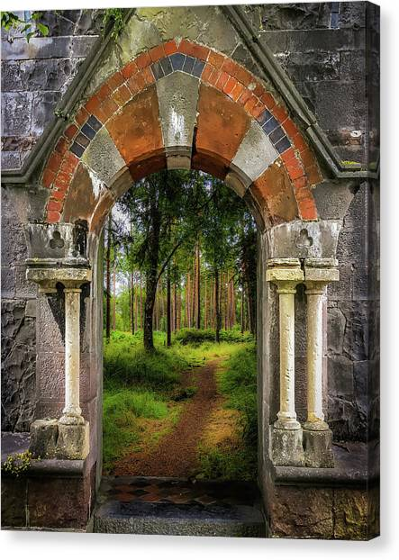 Canvas Print featuring the photograph Portal To Portumna Forest by James Truett