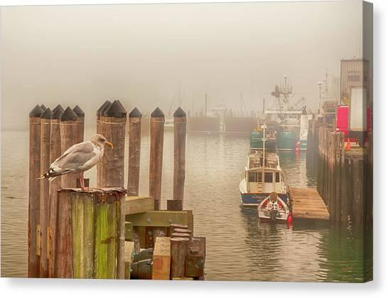Portland Harbor Morning Canvas Print