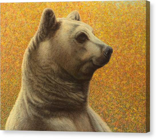 Black Bears Canvas Print - Portrait Of A Bear by James W Johnson