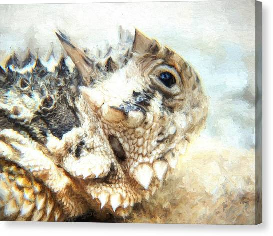 University Of Kansas Canvas Print - Portrait Of A Horned Lizard by JC Findley