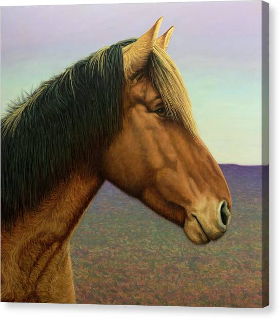 Ponies Canvas Print - Portrait Of A Horse by James W Johnson