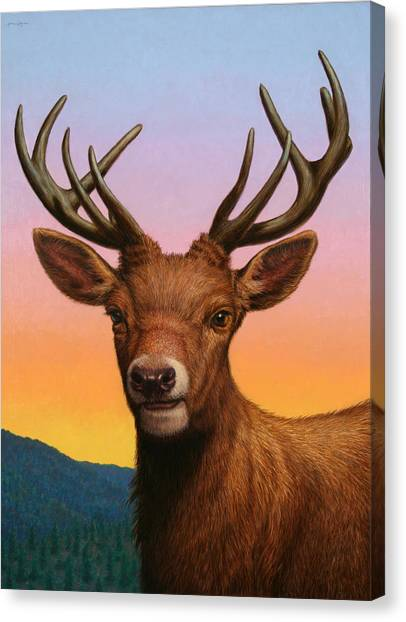 Stag Canvas Print - Portrait Of A Red Deer by James W Johnson